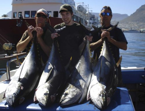 General Tuna Masters Cape Town Information