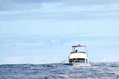 Tuna Masters Cape Town - deep sea fishing charters cape town fishing tuna fishing hout bay02