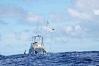 Tuna Masters Cape Town - deep sea fishing charters cape town fishing tuna fishing hout bay08