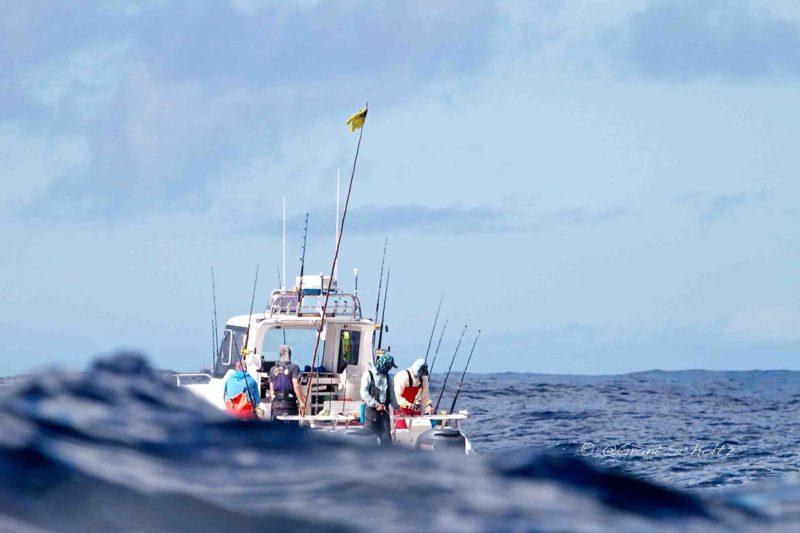 Tuna Masters Cape Town - deep sea fishing charters cape town fishing tuna fishing hout bay09