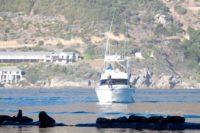 Tuna Masters Cape Town - deep sea fishing charters cape town fishing tuna fishing hout bay11
