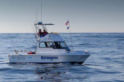 Tuna Masters Cape Town - deep sea fishing charters cape town fishing tuna fishing hout bay21