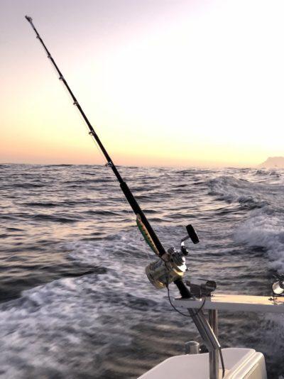 deep sea fishing charters cape town fishing tuna fishing hout bay 10101