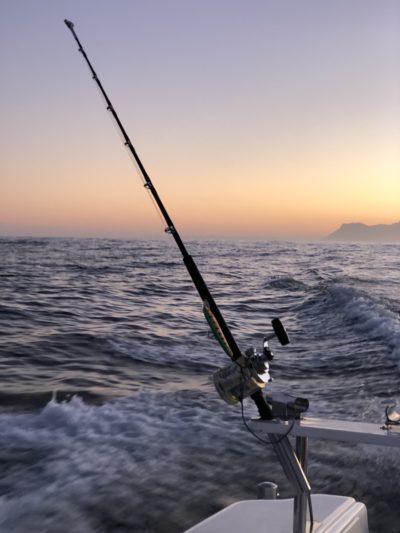 deep sea fishing charters cape town fishing tuna fishing hout bay 10102
