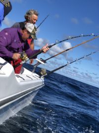 deep sea fishing charters cape town fishing tuna fishing hout bay 10105