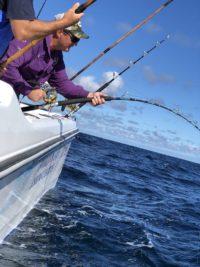 deep sea fishing charters cape town fishing tuna fishing hout bay 10106