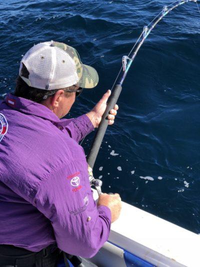 deep sea fishing charters cape town fishing tuna fishing hout bay 10110