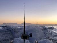 deep sea fishing charters cape town fishing tuna fishing hout bay 10112