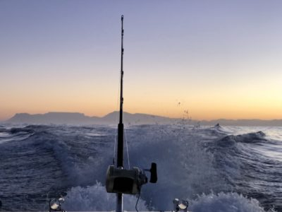 deep sea fishing charters cape town fishing tuna fishing hout bay 10112