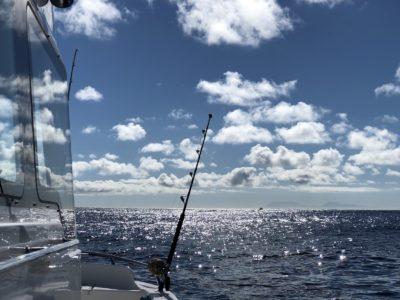 deep sea fishing charters cape town fishing tuna fishing hout bay 10113