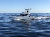 deep sea fishing charters cape town fishing tuna fishing hout bay 10115