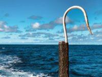 deep sea fishing charters cape town fishing tuna fishing hout bay 10116