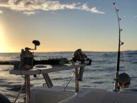 deep sea fishing charters cape town fishing tuna fishing hout bay 10118
