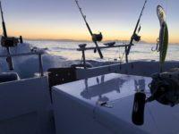 deep sea fishing charters cape town fishing tuna fishing hout bay 10120