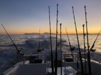 deep sea fishing charters cape town fishing tuna fishing hout bay 10122